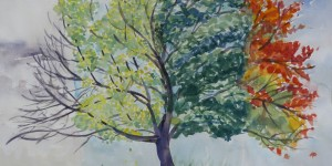 19 4SeasonTree